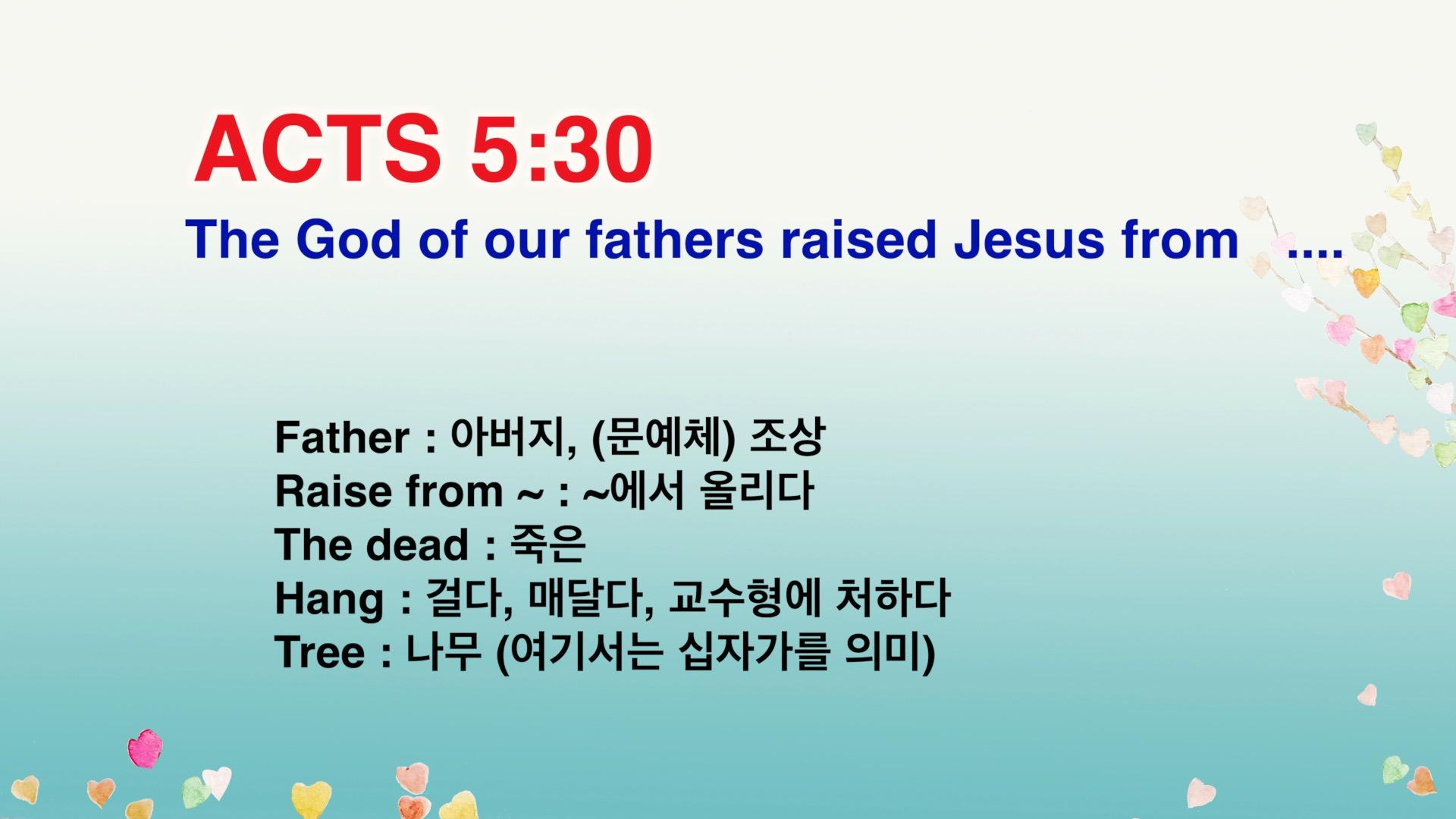 Leena's Bible English-Acts Chap. 5, Ver.30